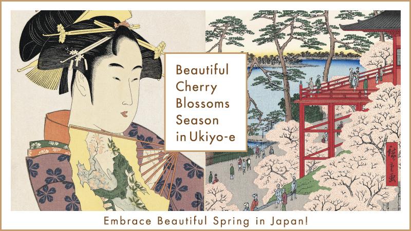 Beautiful Cherry Blossoms Season in Ukiyo-e