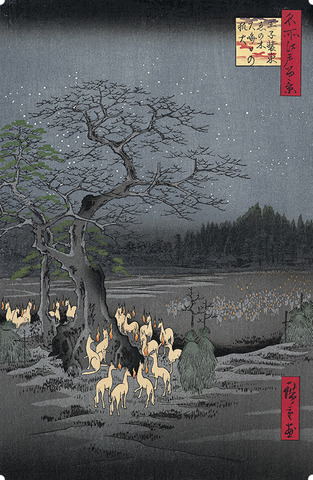 New Year's Eve Foxfires at the Nettle Tree in Oji