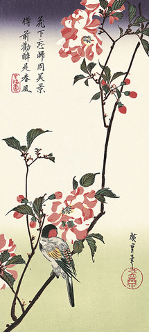 Double-petalled Cherry Blossoms and  a Bird