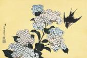 紫陽花に燕