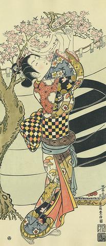 石川豊信「桜に短冊を結ぶ娘」