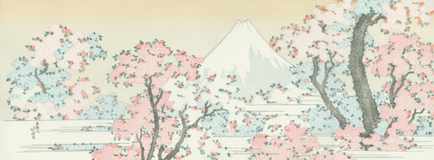 Mount Fuji with Cherry Trees in Bloom
