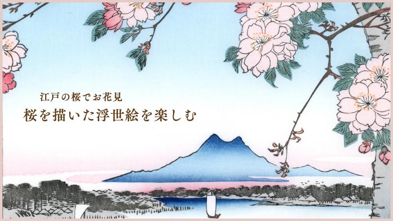 江戸の桜でお花見 桜を描いた浮世絵を楽しむ