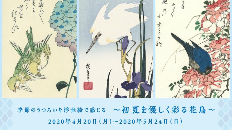 季節のうつろいを浮世絵で感じる~初夏を優しく彩る花鳥~
