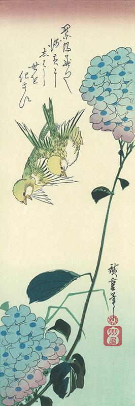 歌川広重 紫陽花に鶸