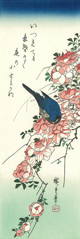 広重 薔薇に瑠璃鳥