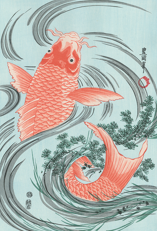 歌川豊国 緋鯉