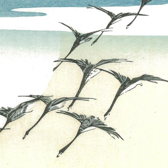 雁の画像 p1_30